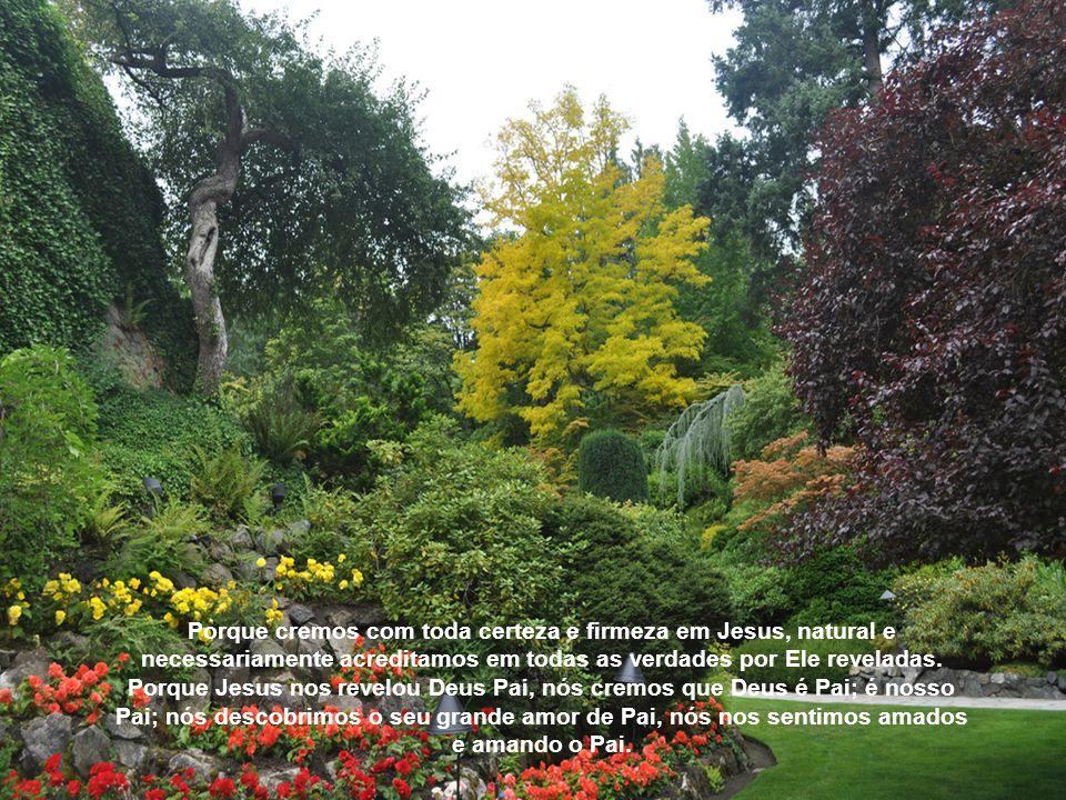 Porque cremos com toda certeza e firmeza em Jesus, natural e necessariamente acreditamos em todas as verdades por Ele reveladas.