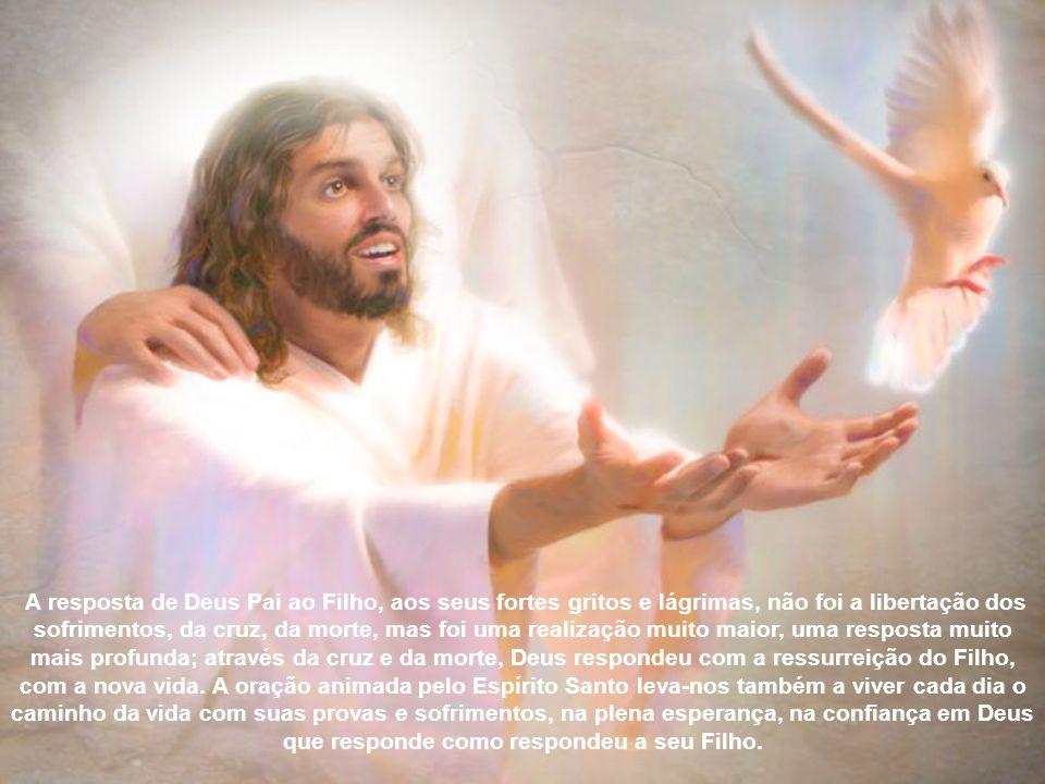 Na realidade, não existe grito humano que não escutado por Deus e exatamente na oração constante e fiel, compreendemos com São Paulo que os sofrimento