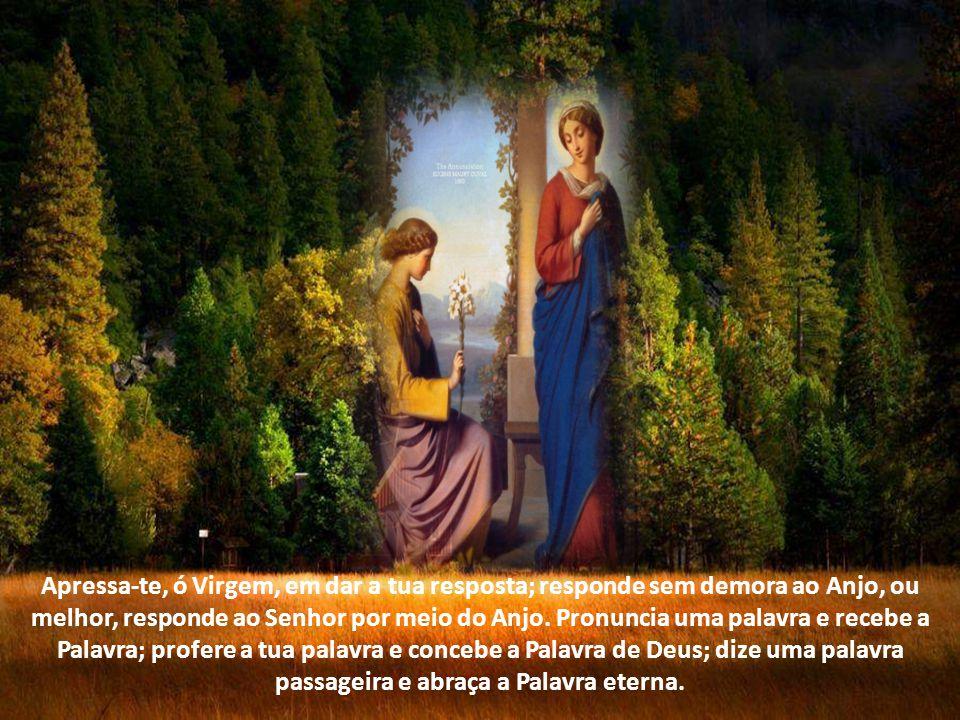 Apressa-te, ó Virgem, em dar a tua resposta; responde sem demora ao Anjo, ou melhor, responde ao Senhor por meio do Anjo.