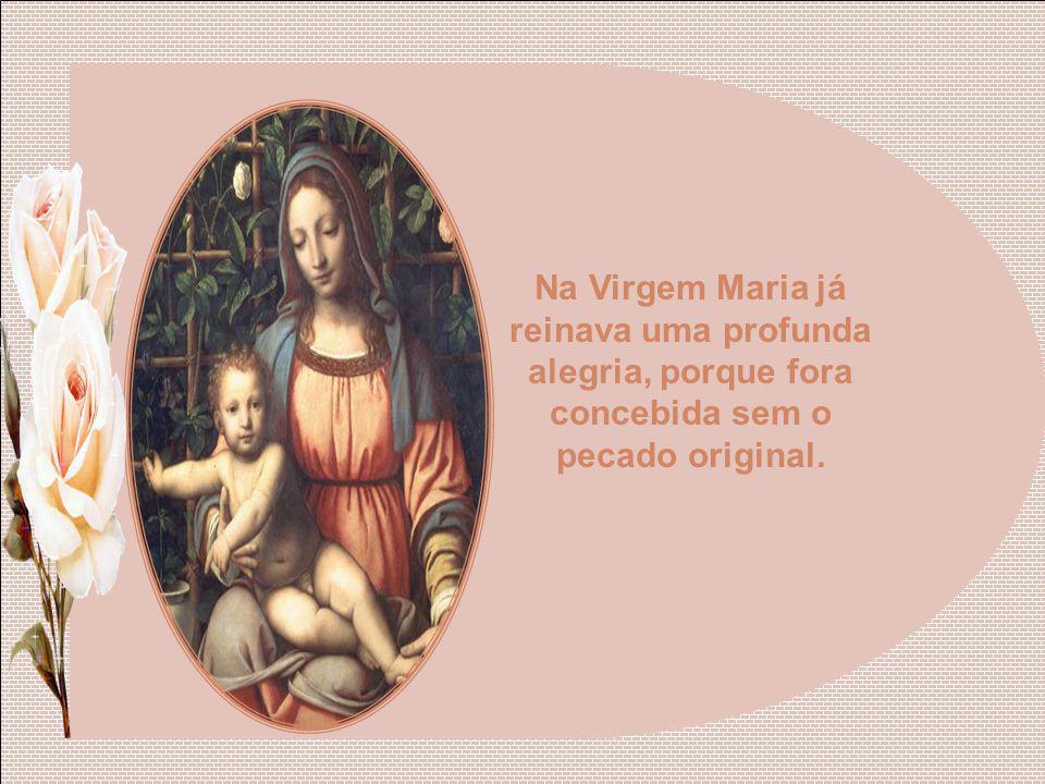 A alegria verdadeira, unida sempre ao bem, veio plenamente à terra no dia que Nossa Senhora deu o seu consentimento ao plano divino e o Filho de Deus