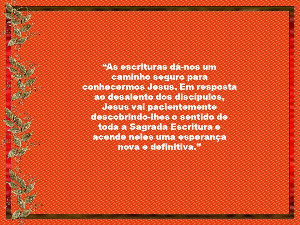 Nossa Senhora, rainha dos desamparados, intercedei por nós, a fim de que a Eucaristia que recebermos abra os nossos olhos e nos mostre – O Caminho.