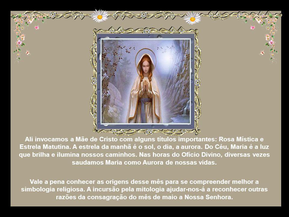 Ali invocamos a Mãe de Cristo com alguns títulos importantes: Rosa Mística e Estrela Matutina.
