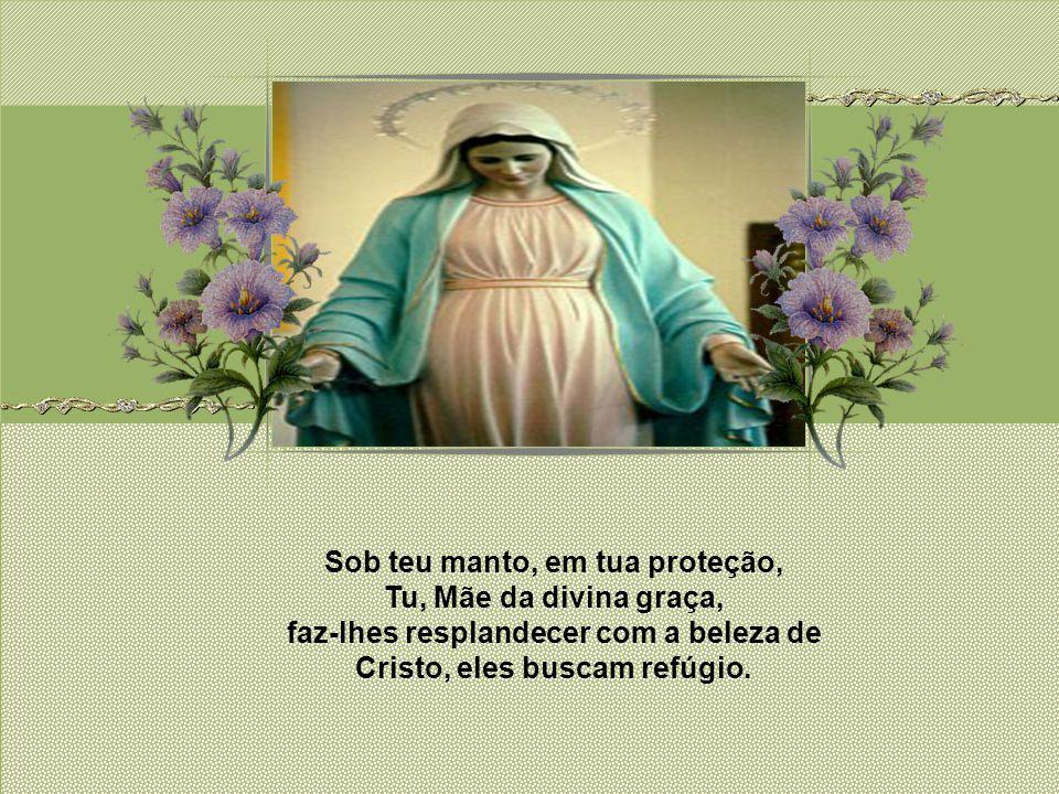 Aí tens a tua mãe (Jo 19, 27). Foi Jesus, Virgem Maria quem desde a cruz nos quis entregar a ti, não para atenuar mas para confirmar seu papel exclusi