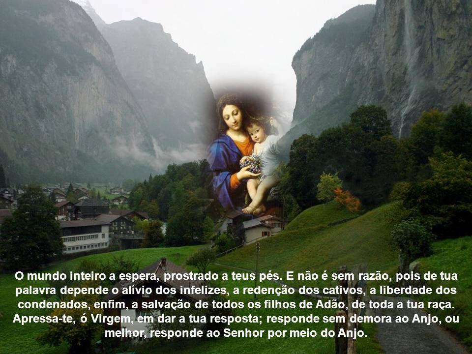Ó Virgem cheia de bondade, o pobre Adão, expulso do paraíso com a sua mísera descendência, implora a tua resposta; Abraão a implora, Davi a implora. O