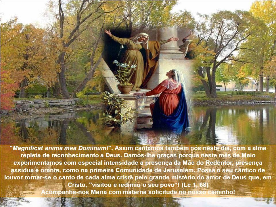 Magnificat anima mea Dominum!