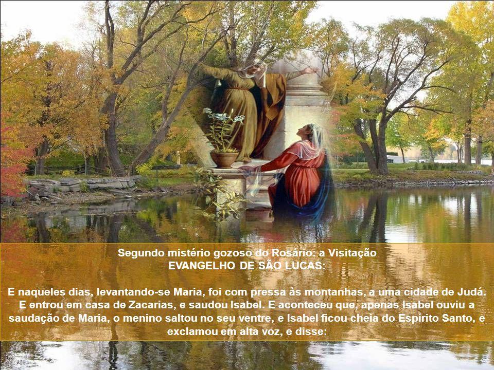 Segundo mistério gozoso do Rosário: a Visitação EVANGELHO DE SÃO LUCAS: E naqueles dias, levantando-se Maria, foi com pressa às montanhas, a uma cidade de Judá.