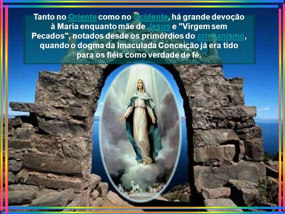 Segundo a Igreja Católica, o bom senso dos fiéis sempre acreditou na imunidade de Maria do pecado original.