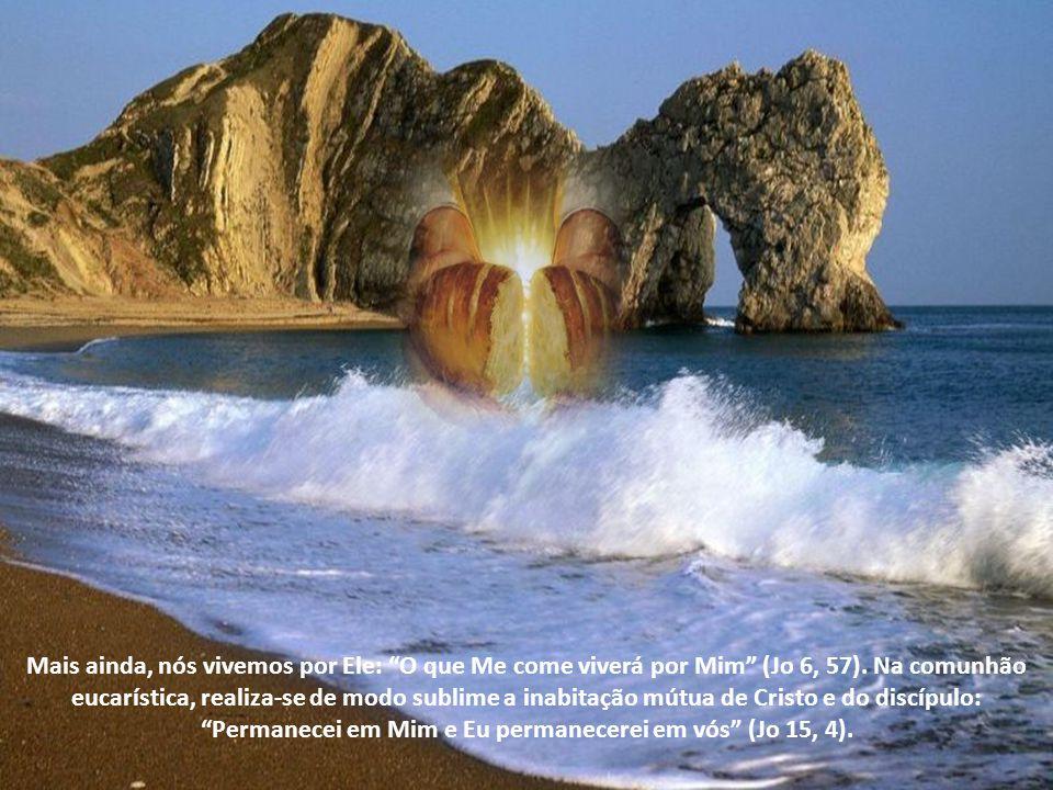 A incorporação em Cristo, realizada pelo Batismo, renova-se e consolida-se continuamente através da participação no sacrifício eucarístico, sobretudo