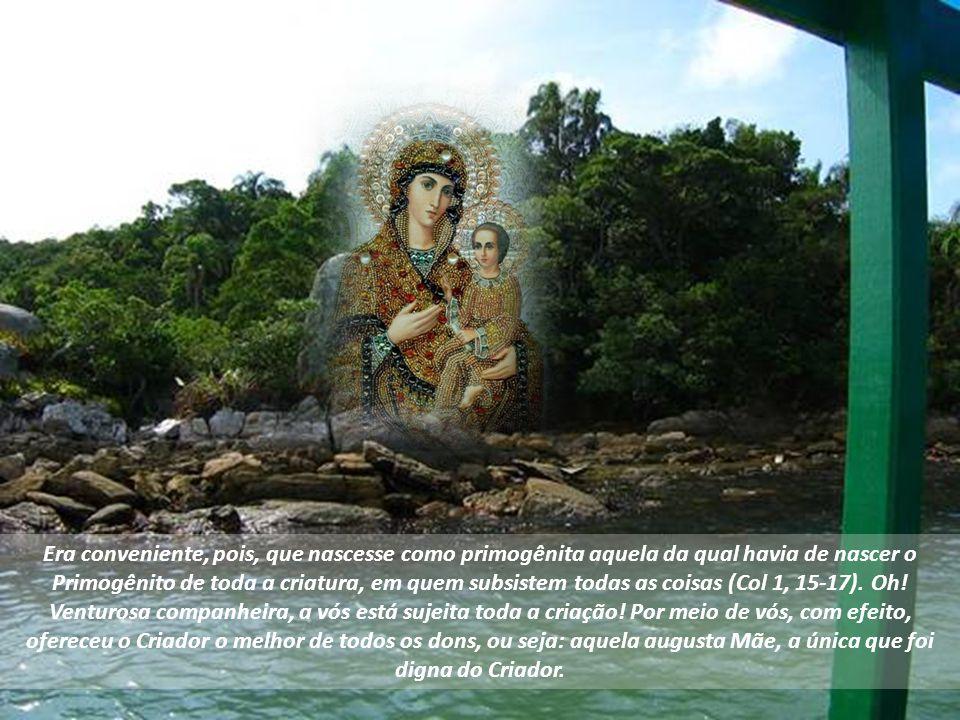 Texto - São João Damasceno- Ano 730-740 – Música Magnificat Gregoriano – Imagens – Google – Formatação – Altair Castro 09/11/2013