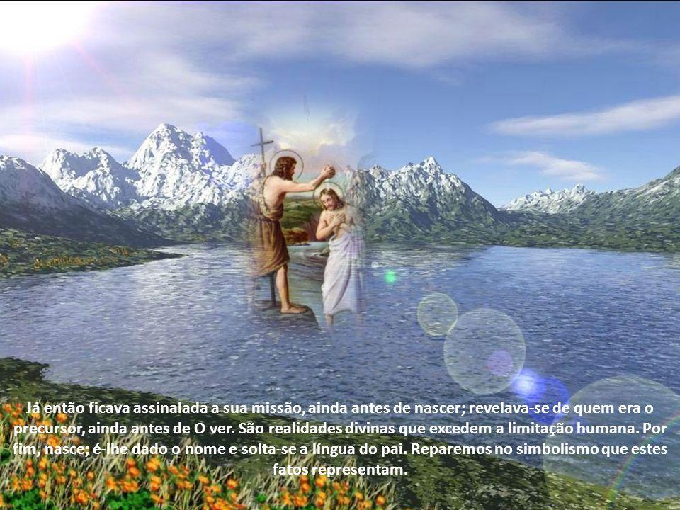 Porque representa o Antigo, nasce de pais velhos; porque anuncia o Novo, é declarado profeta quando está ainda nas entranhas de sua mãe.