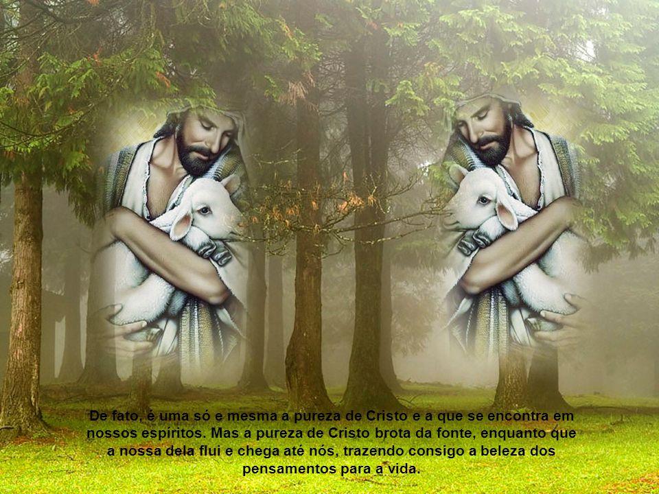 O que, porém, está livre e puro de toda afeição desordenada, relaciona-se como Autor e Príncipe da tranquilidade, o Cristo. Quem dele bebe, como de fo
