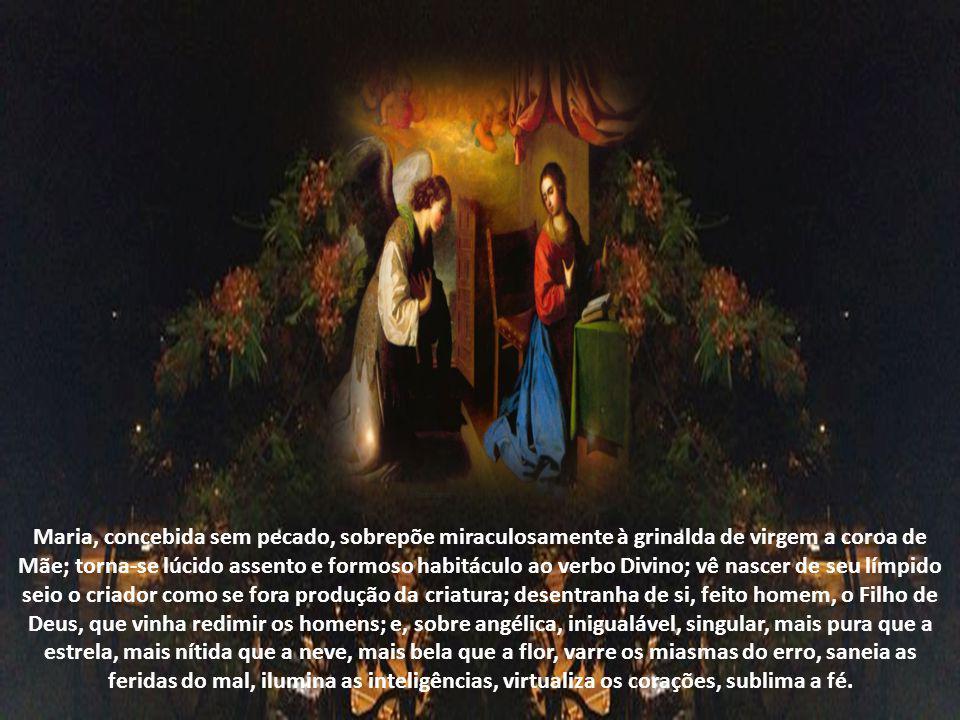 Quando a Igreja necessita de sacerdotes e de religiosos, Maria alimenta as vocações. Quando a fé titubeia, Maria aparece para fortalecer. Com inarredá