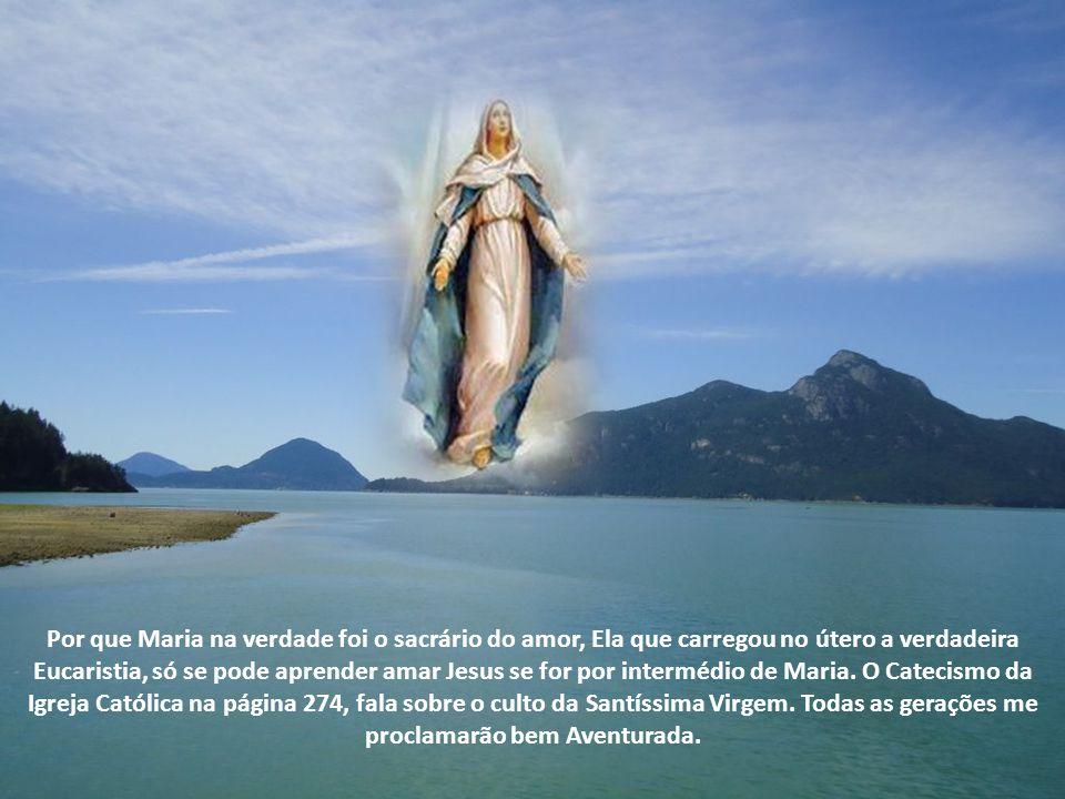 Por que Maria na verdade foi o sacrário do amor, Ela que carregou no útero a verdadeira Eucaristia, só se pode aprender amar Jesus se for por intermédio de Maria.