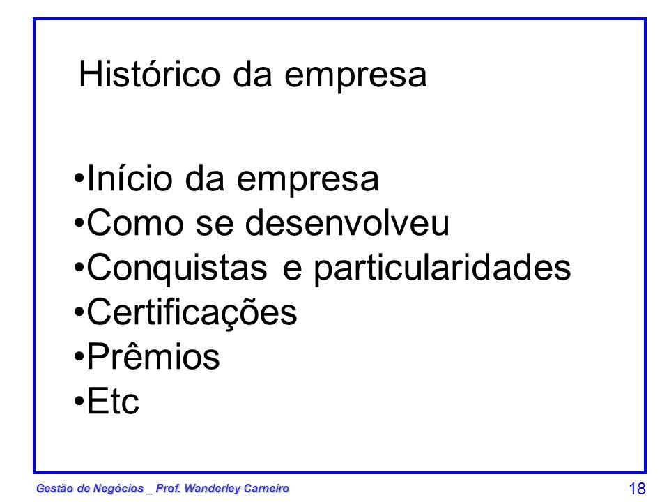 Gestão de Negócios _ Prof. Wanderley Carneiro 18 Histórico da empresa Início da empresa Como se desenvolveu Conquistas e particularidades Certificaçõe