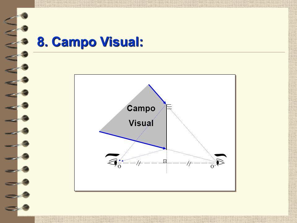 Campo Visual 8. Campo Visual: