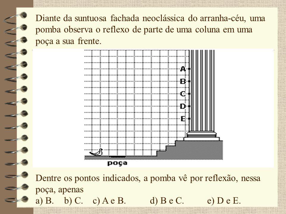Diante da suntuosa fachada neoclássica do arranha-céu, uma pomba observa o reflexo de parte de uma coluna em uma poça a sua frente. Dentre os pontos i