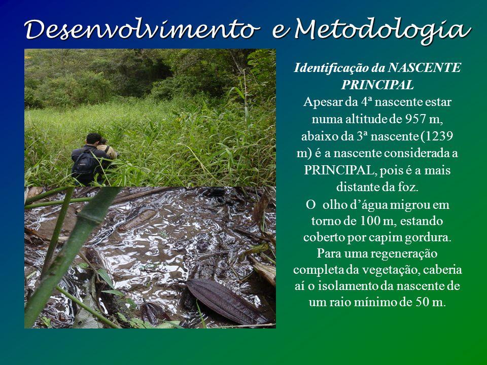 Desenvolvimento e Metodologia Centro Unisal: Reconhecimento da Área de Preservação Permanente O entorno da nascente está cercada por uma mata em regen