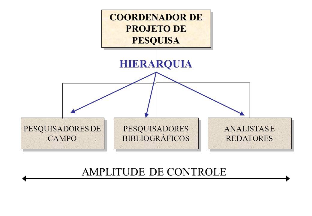 COORDENADOR DE PROJETO DE PESQUISA AMPLITUDE DE CONTROLE PESQUISADORES DE CAMPO PESQUISADORES BIBLIOGRÁFICOS ANALISTAS E REDATORES HIERARQUIA