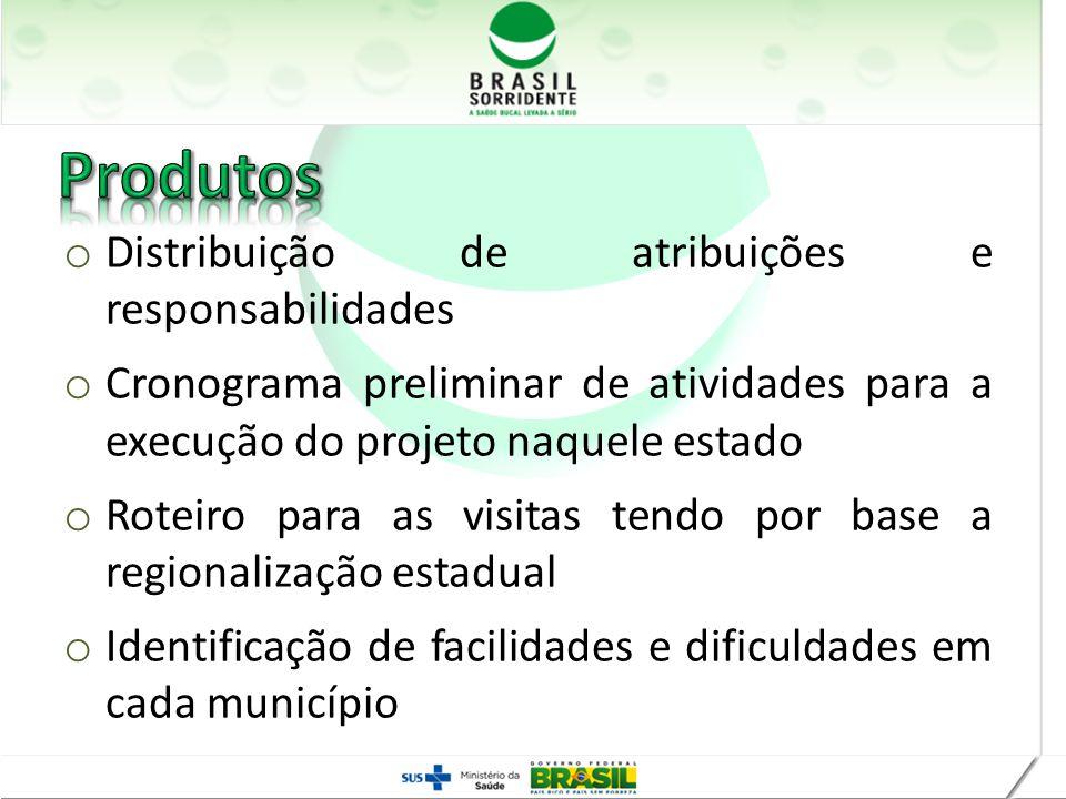 o Distribuição de atribuições e responsabilidades o Cronograma preliminar de atividades para a execução do projeto naquele estado o Roteiro para as vi