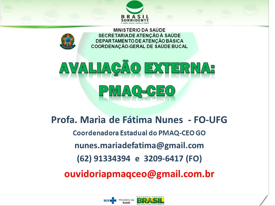 MINISTÉRIO DA SAÚDE SECRETARIA DE ATENÇÃO À SAÚDE DEPARTAMENTO DE ATENÇÃO BÁSICA COORDENAÇÃO-GERAL DE SAÚDE BUCAL Profa. Maria de Fátima Nunes - FO-UF
