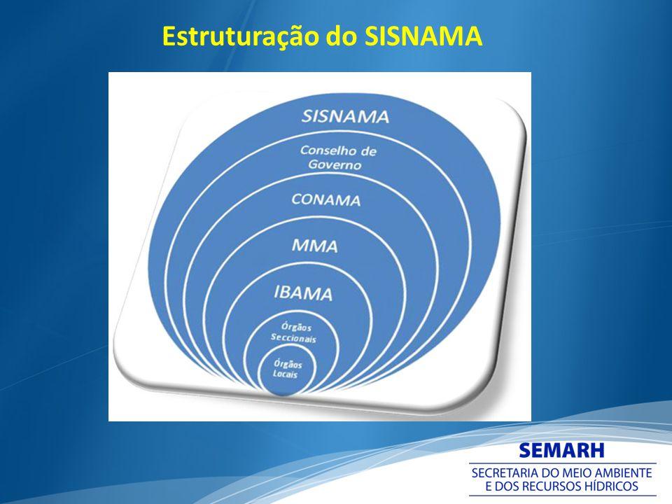 Evolução da Descentralização em Goiás Decreto Estadual nº 5.159/1999 – instituiu o PAAI ( Programa de Descentralização das Ações Ambientais Integradas) - em vigência.