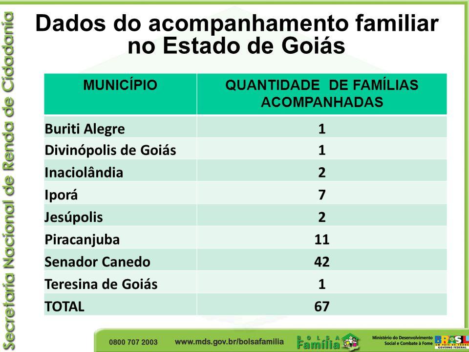 Dados do acompanhamento familiar no Estado de Goiás MUNICÍPIOQUANTIDADE DE FAMÍLIAS ACOMPANHADAS Buriti Alegre1 Divinópolis de Goiás1 Inaciolândia2 Ip