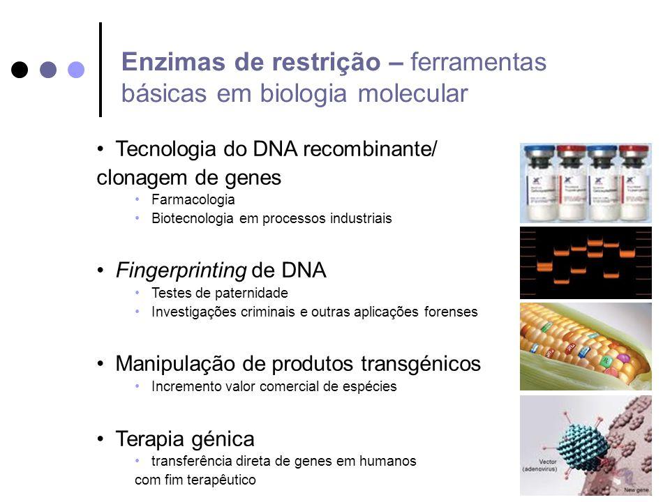 11/10/2013 Tecnologia do DNA recombinante/ clonagem de genes Farmacologia Biotecnologia em processos industriais Fingerprinting de DNA Testes de pater