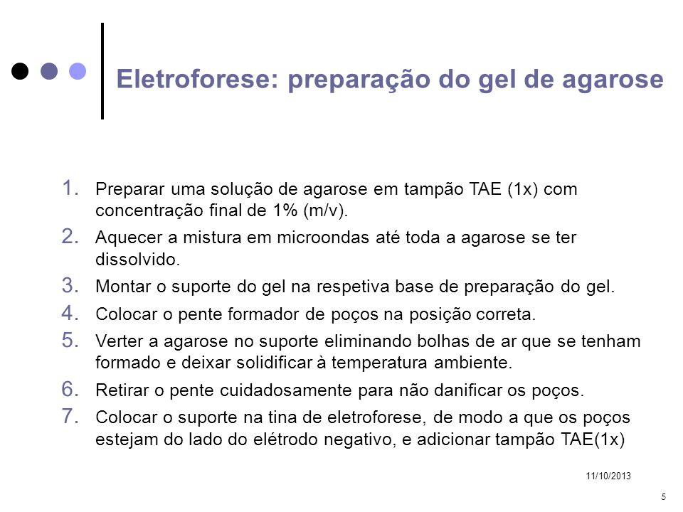 11/10/2013 5 Eletroforese: preparação do gel de agarose 1. Preparar uma solução de agarose em tampão TAE (1x) com concentração final de 1% (m/v). 2. A