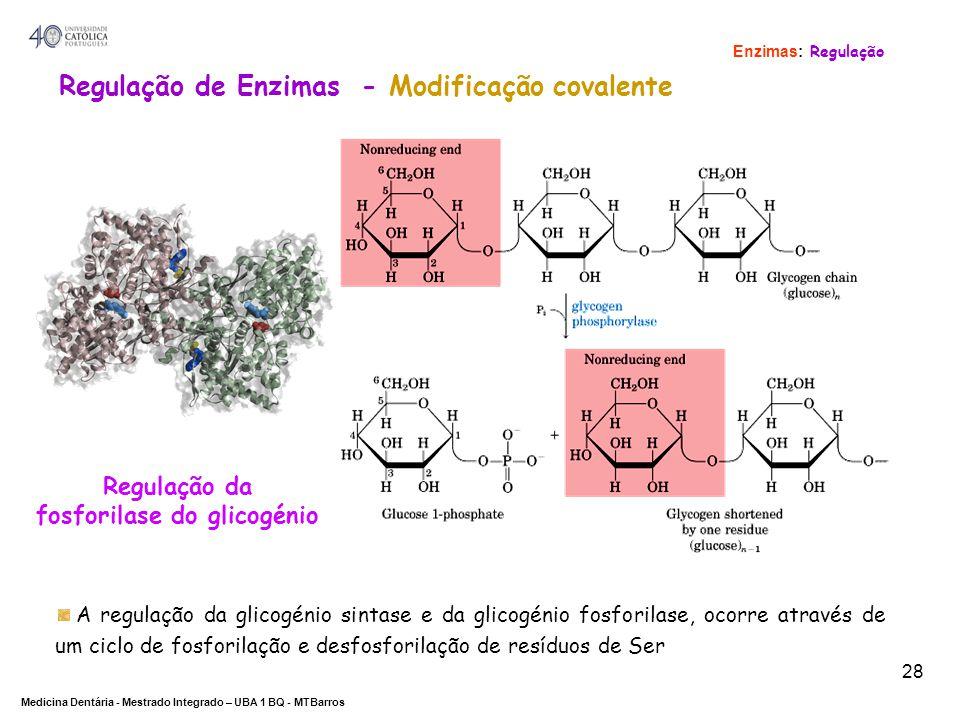 DEPARTAMENTO DE CIÊNCIAS DA SAÚDE Medicina Dentária - Mestrado Integrado – UBA 1 BQ - MTBarros 28 Regulação da fosforilase do glicogénio Regulação de