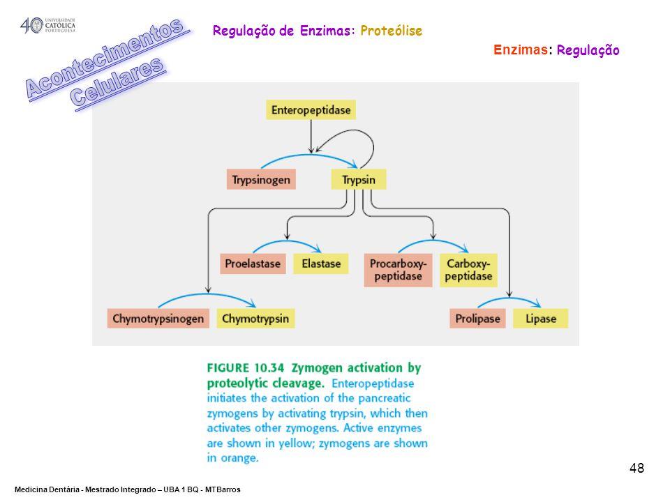 DEPARTAMENTO DE CIÊNCIAS DA SAÚDE Medicina Dentária - Mestrado Integrado – UBA 1 BQ - MTBarros 48 Enzimas: Regulação Regulação de Enzimas: Proteólise