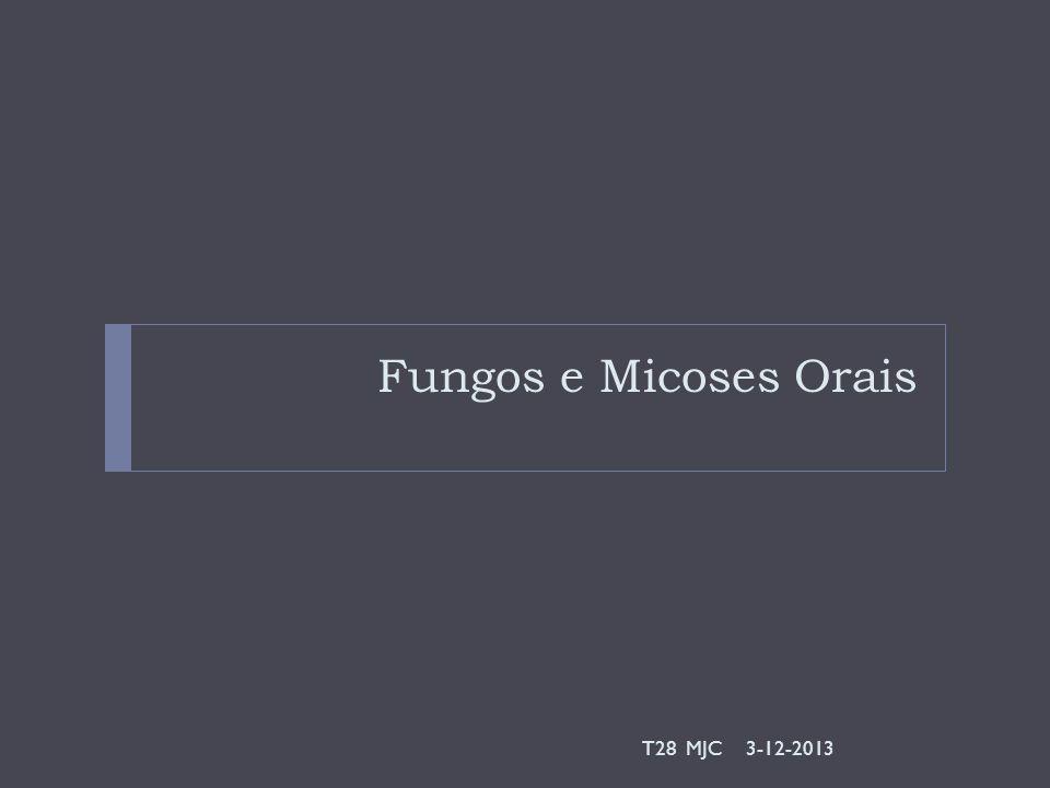 Fungos e Micoses Orais 3-12-2013T28 MJC