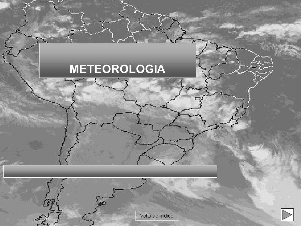 Os fenômenos meteorológicos ocorrem porque: o Sol aquece a Terra de forma desigual.