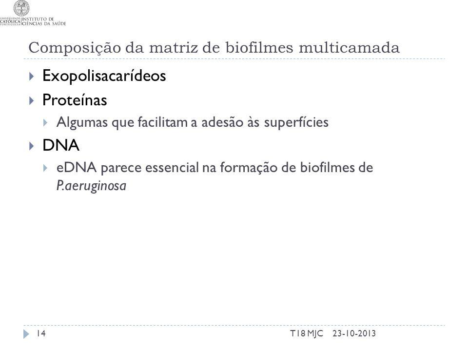 Composição da matriz de biofilmes multicamada Exopolisacarídeos Proteínas Algumas que facilitam a adesão às superfícies DNA eDNA parece essencial na f