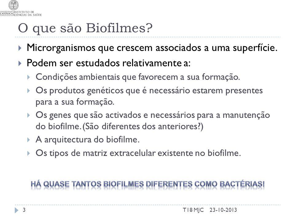 Biofilme Organismo multicelular Metabolismo energético Alterações do fenótipo Quorum sensins Formação do biofilme Existência Arquitectura Expressão de bacteriocinas Expressão de factores de virulência O próprio biofilme é factor de virulência 23-10-2013T18 MJC4