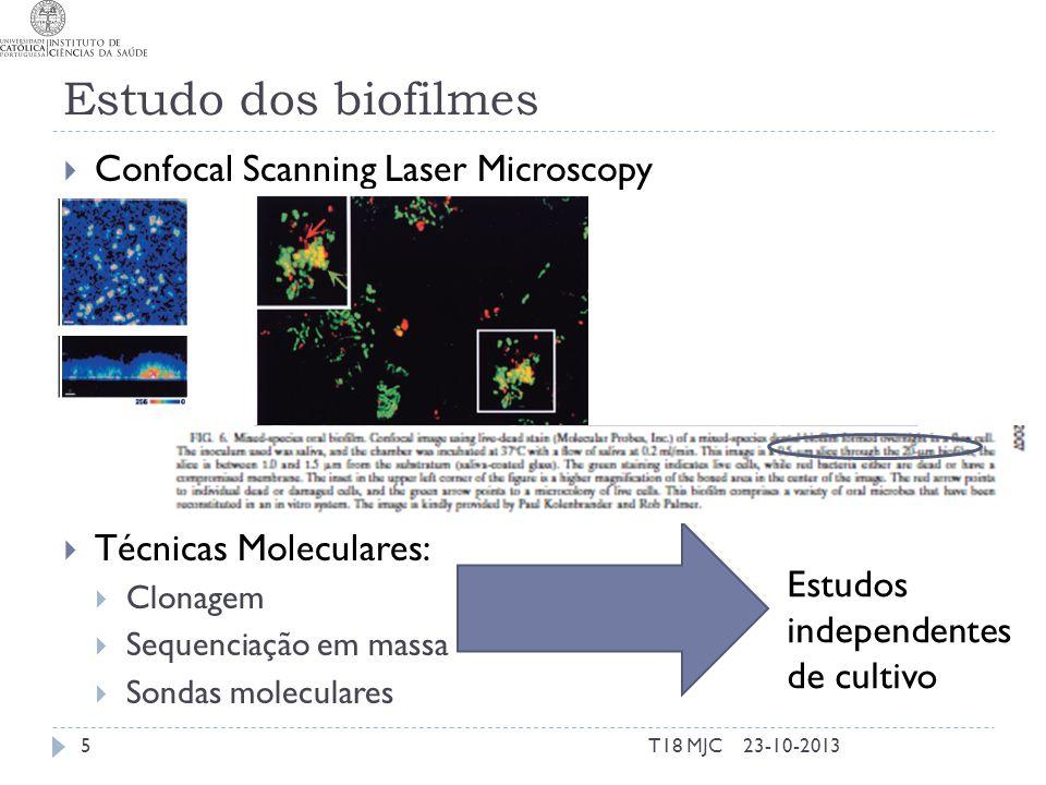 Estudo dos biofilmes Confocal Scanning Laser Microscopy Técnicas Moleculares: Clonagem Sequenciação em massa Sondas moleculares 23-10-2013T18 MJC5 Est