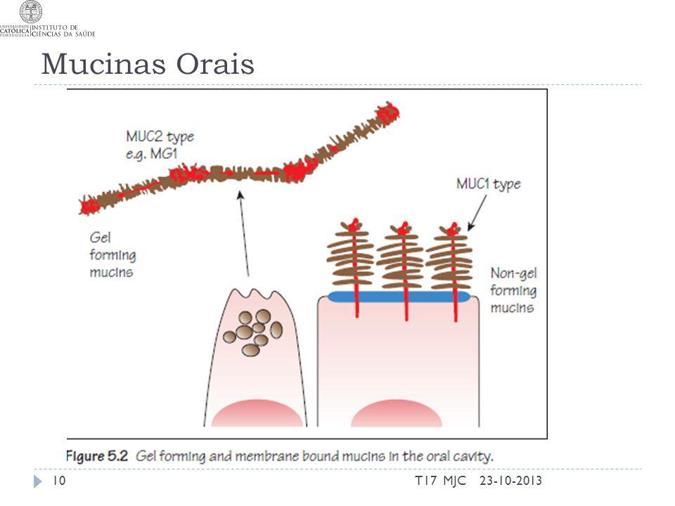 Mucinas Orais 23-10-2013T17 MJC10