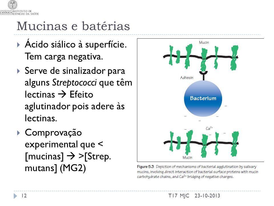 Mucinas e batérias Ácido siálico à superfície. Tem carga negativa. Serve de sinalizador para alguns Streptococci que têm lectinas Efeito aglutinador p