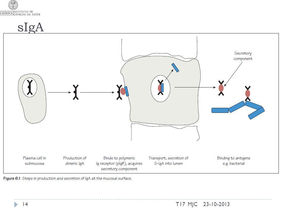 sIgA 23-10-2013T17 MJC14