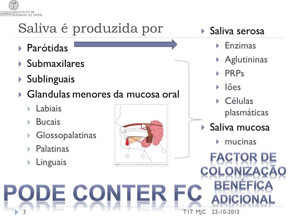 Saliva é produzida por Parótidas Submaxilares Sublinguais Glandulas menores da mucosa oral Labiais Bucais Glossopalatinas Palatinas Linguais 23-10-201