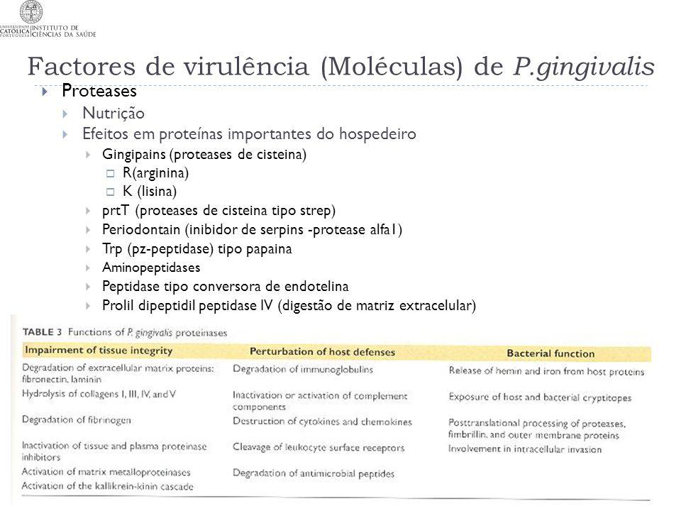 Factores de virulência (Moléculas) de P.gingivalis Proteases Nutrição Efeitos em proteínas importantes do hospedeiro Gingipains (proteases de cisteina