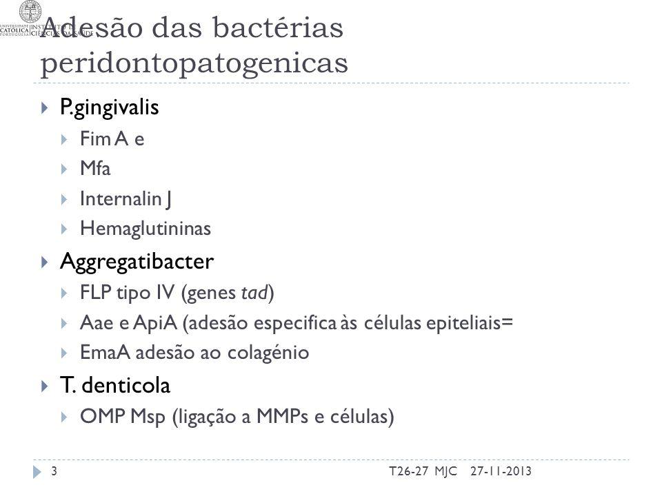 Factores de virulência (Mecanismos) – A.actinomycemcomitans Adesão Mais eficiente em células com fimbrias Coadesão e coagregação apenas com Fusobacterium Adesão não específica Locus tad formação de longas fibrilas e pili Adesão específica a células epiteliais Fimbrias ExAmMat Vesículas Adesinas (aae) Adesão a matriz extracelular OMPs ligam colagénio e fibronectina 27-11-201324T26-27 MJC