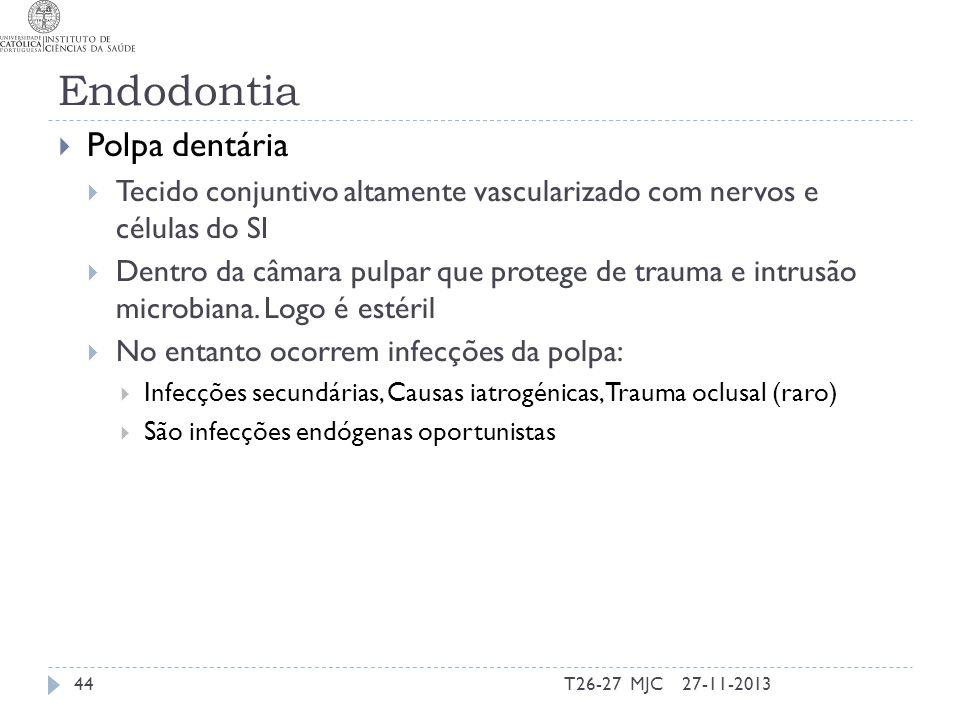Endodontia Polpa dentária Tecido conjuntivo altamente vascularizado com nervos e células do SI Dentro da câmara pulpar que protege de trauma e intrusã