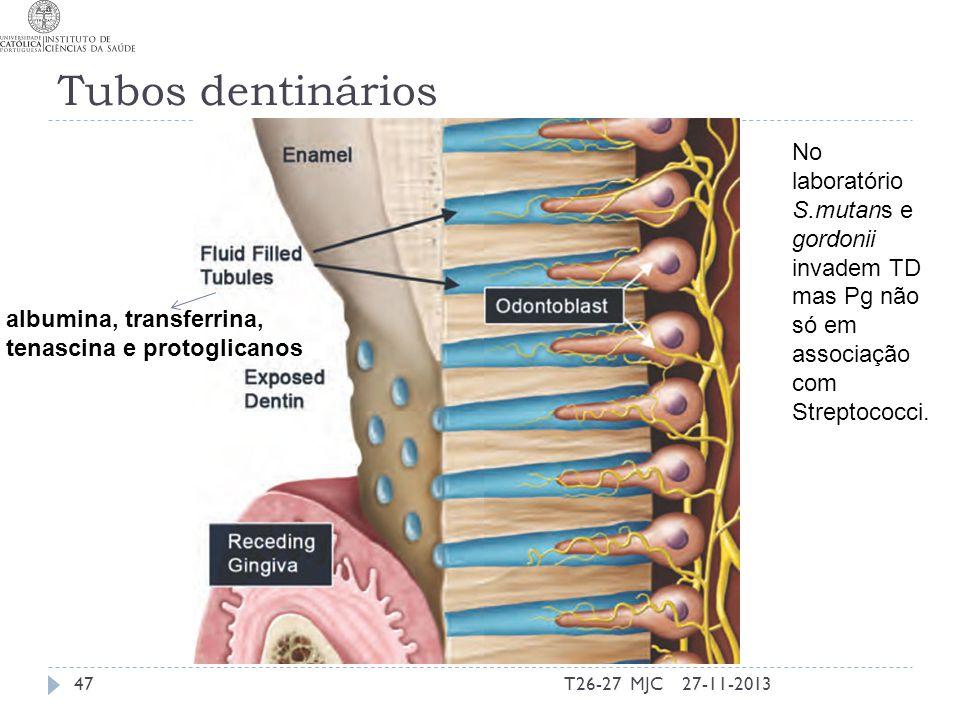 Tubos dentinários 27-11-2013T26-27 MJC47 albumina, transferrina, tenascina e protoglicanos No laboratório S.mutans e gordonii invadem TD mas Pg não só