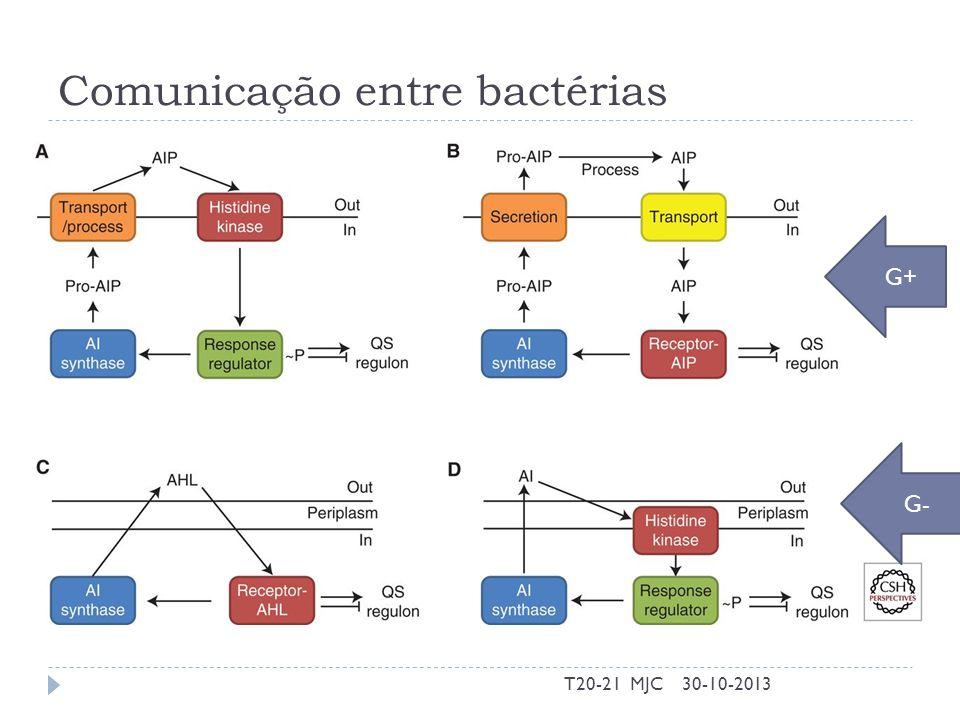 Comunicação entre bactérias 30-10-2013T20-21 MJC G+ G-