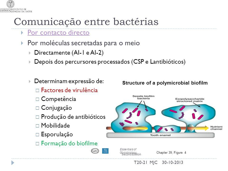 Comunicação entre bactérias Por contacto directo Por moléculas secretadas para o meio Directamente (AI-1 e AI-2) Depois dos percursores processados (C