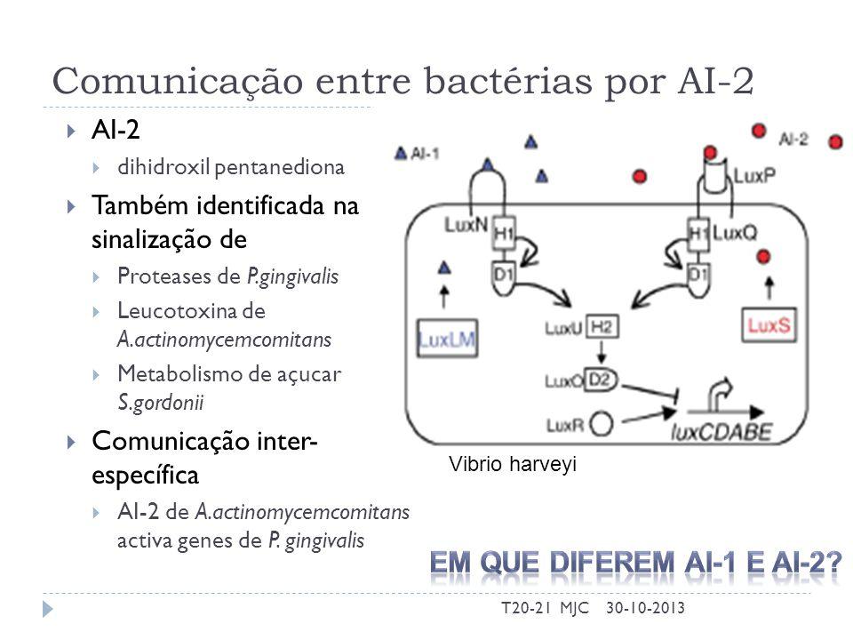 Comunicação entre bactérias por AI-2 AI-2 dihidroxil pentanediona Também identificada na sinalização de Proteases de P.gingivalis Leucotoxina de A.act