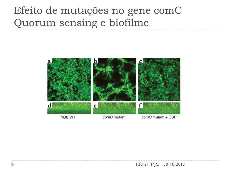 Efeito de mutações no gene comC Quorum sensing e biofilme 30-10-2013T20-21 MJC