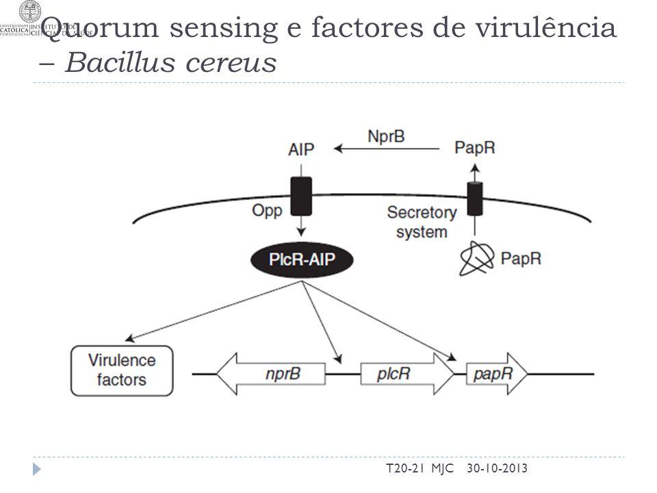 Quorum sensing e factores de virulência – Bacillus cereus 30-10-2013T20-21 MJC