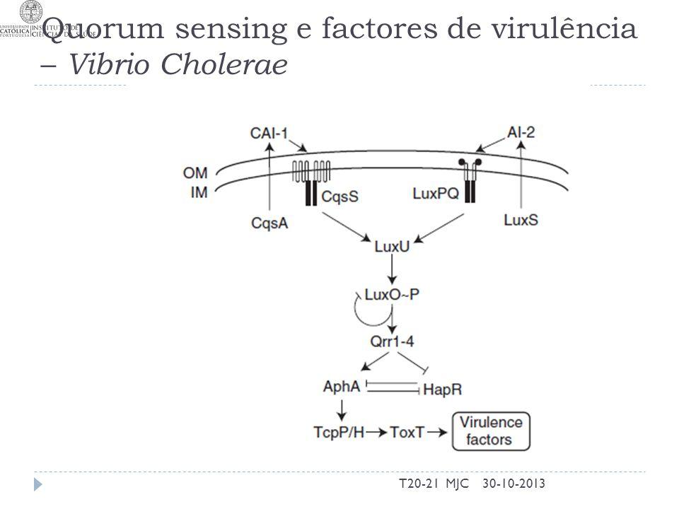 Quorum sensing e factores de virulência – Vibrio Cholerae 30-10-2013T20-21 MJC