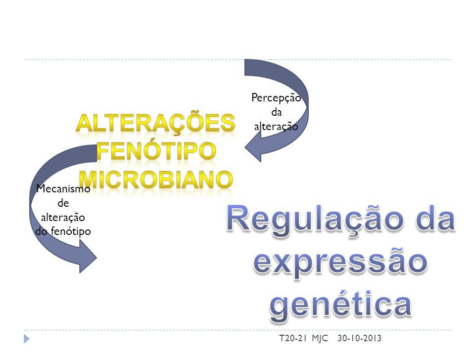 30-10-2013T20-21 MJC Percepção da alteração Mecanismo de alteração do fenótipo